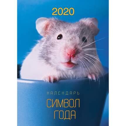 Календарь 2020 Символ года Дизайн 1 (Евроспираль), КПВМ2001