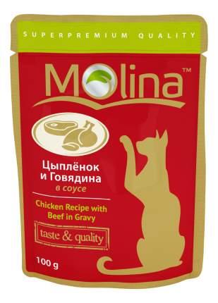 Влажный корм для кошек Molina, с цыпленком и говядиной в соусе, 24шт по 100г