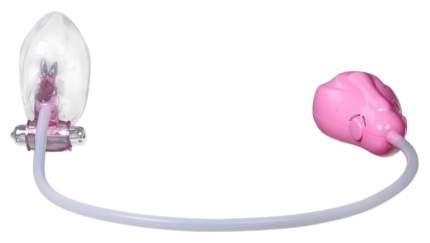 Помпа автоматическая для клитора и малых половых губ с вибрацией