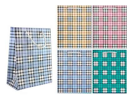 Пакет подарочный бумажный tzak клетка 32*44*11 см, 4 цвета