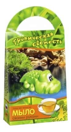Поделка Аромафабрика Тропическая свежесть Зеленый чай