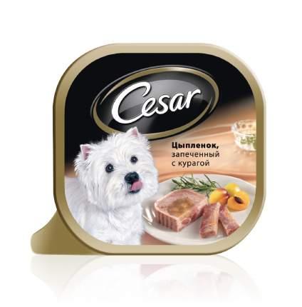 Консервы для собак Cesar, запеченый цыпленок и курага, 100г