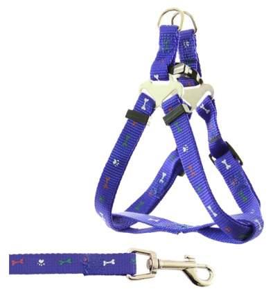 Шлейка+поводок для собак Triol, синий, 20 мм, шея 50-70см, 120 см поводок