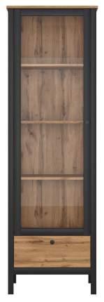 Платяной шкаф BlackRedWhite BRW_70003738 62х38,5х192,5, дуб вотан/черный
