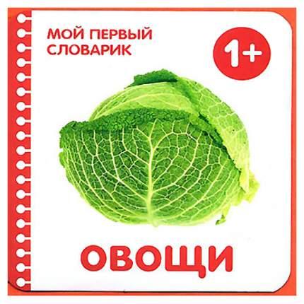 Книга МОЗАИКА-СИНТЕЗ Овощи