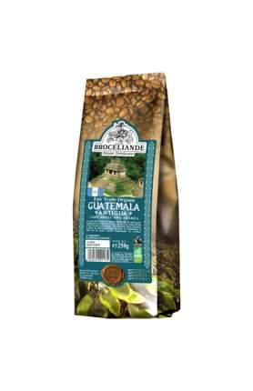Кофе молотый Broceliande Guatemala 250 г