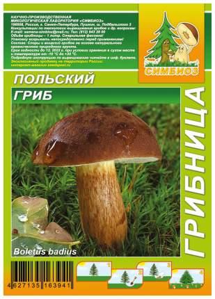 Мицелий грибов Грибница субстрат микоризный Польский гриб, 1 л Симбиоз