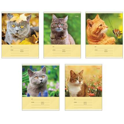 """Тетрадь """"Коты на природе"""" (А5, 12л, скрепка, линия), ТЛ126298 в ассортименте"""