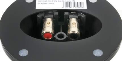 Полочная акустика Cabasse Alcyone 2 Satellite (Glossy Black)