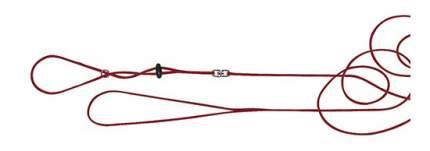 Поводок и шлейка Ferplast для хомяков, красный