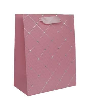Пакеты подарочные ламинированные, цвет: C-розовый, 23x18x10 см, арт. BK981