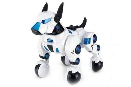 Радиоуправляемая собака Rastar DOGO 77960