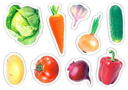 Игра Магнитная Развивающая, Магнитные Истории Овощи (4Х20 шт) 02709Дк Десятое Королевство