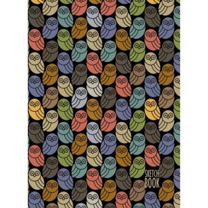 Скетчбук спираль (А4 80л 100г/м2) Ночные птицы, ТС4804479
