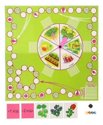 Семейная настольная игра Про растения Радуга с-591