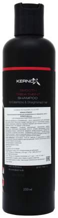 Шампунь Egomania Professional Kernox Straight Shampoo 250 мл