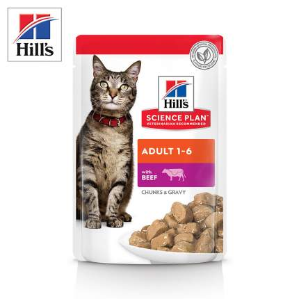 Влажный корм для кошек Hill's Science Plan Adult, говядина, 12шт по 85г