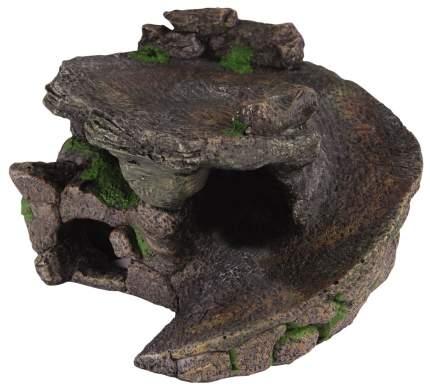 Черепаший берег камень серый, зеленый
