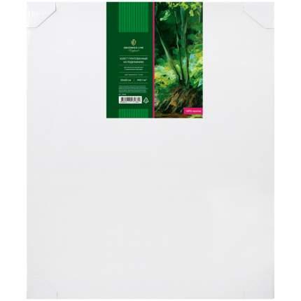 Холст грунтованный на подрамнике, 50x60 см, 100% хлопок, 440 г/м2, крупное зерно