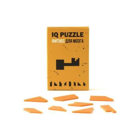 Пазл IQ Puzzle Ключик