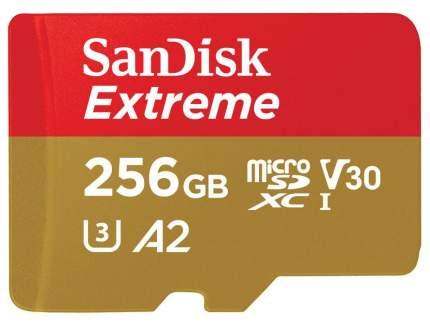 Карта памяти SanDisk SDXC Extreme SDSQXA1-256G-GN6MA 256GB