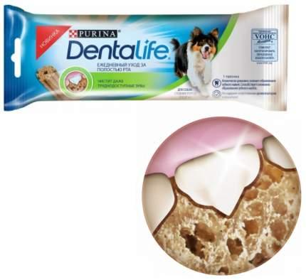 Лакомство для собак Purina DentaLife для средних пород, 23 г