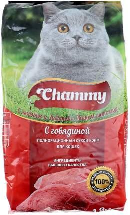 Сухой корм для кошек Chammy, говядина, 1,9кг