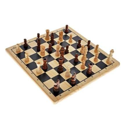 Спортивная настольная игра Tactic Шахматы