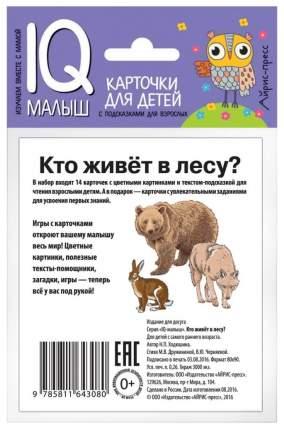 Набор карточек для Детей Айрис-Пресс Умный Малыш. кто Живет В лесу? (25736)