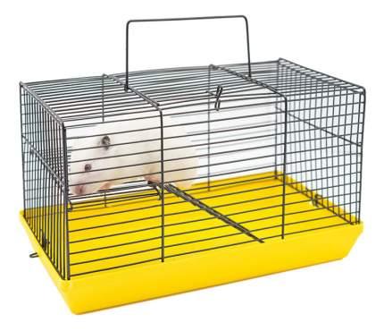 Клетка для грызунов Дарэлл ECO с этажом, без наполнения, в ассортименте, 27х15х16 см