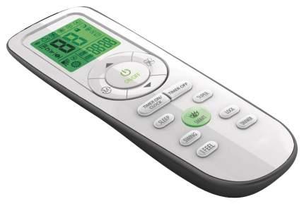 Кондиционер мобильный Ballu Platinum BPHS-09H White/Black