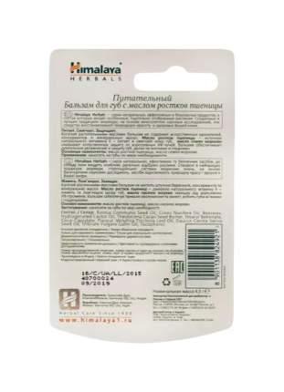 Бальзам для губ Himalaya Herbals Питательный с маслом ростков пшеницы