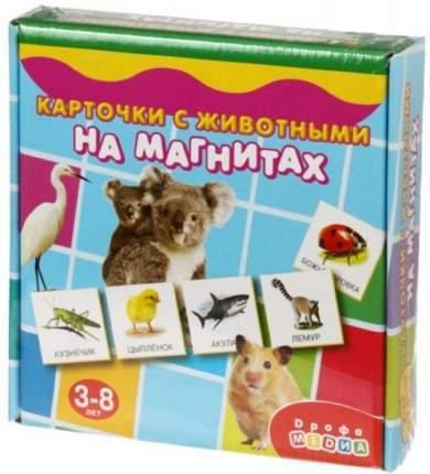 Дрофа-медиа Магнит в коробке. Карточки с животными на магнитах, арт. 2906