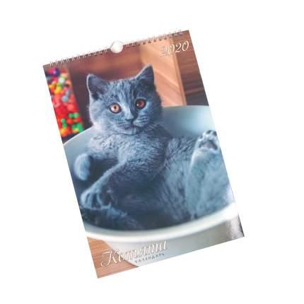 Календарь 2020 Домашние любимцы (Евроспираль), КПВМ2004