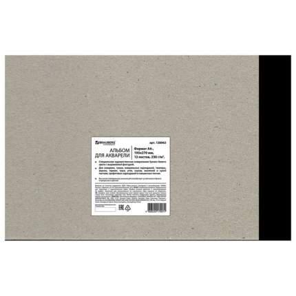 Альбом для акварели (скетчбук) Brauberg 128963, зерно, белый, А4, 12 л