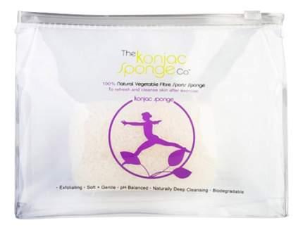 Губка The Konjac Sponge Company Sports Konjac Sponge Lilac для мытья тела