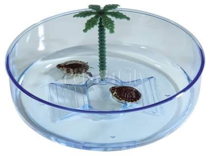 Бассейн для черепах IMAC Turtle Hydra, голубой, 22 х 22 х 6,5 см