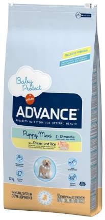 Сухой корм для щенков Advance Babyprotect Puppy Maxi, курица, рис, 12кг