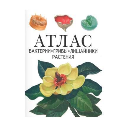 Атлас, Бактерии, Грибы, лишайники, Растения, Черепанов
