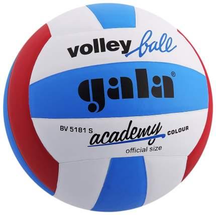 Волейбольный мяч Gala Academy №5 blue/white/red