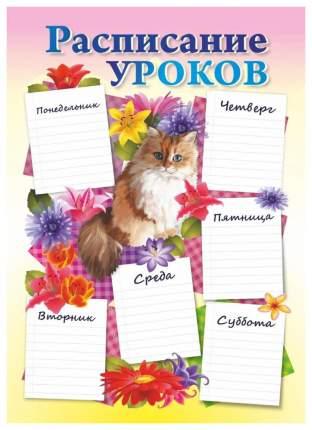 """Плакат """"Расписание уроков"""" (котик): Формат А4"""