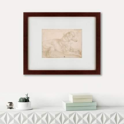 Литография A Dog Resting, 1520, 42х52см, Картины в Квартиру