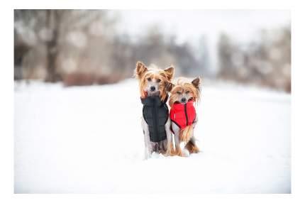 Куртка для собак AiryVest размер S унисекс, черный, красный, длина спины 40 см
