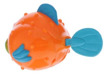 Заводная игрушка для купания ALEX Рыба Еж