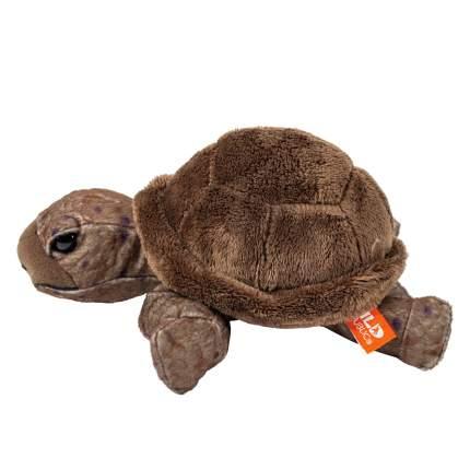Мягкая игрушка Wild republic Черепаха, 19 см 10894