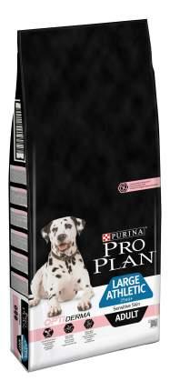 Сухой корм для собак PRO PLAN OptiDerma Large Athletic Adult, крупные породы, лосось, 14кг