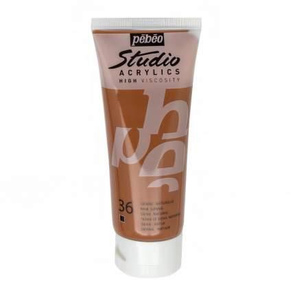 Акриловая краска Pebeo Studio Acrylics 831-036 сиена натуральная 100 мл