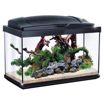 Аквариум для рыб и растений Newa Hobby NH30, черный, 30 л