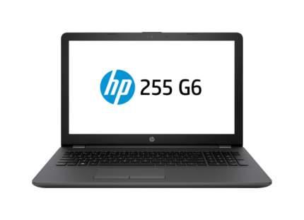 Ноутбук HP 255 G6 1WY10EA