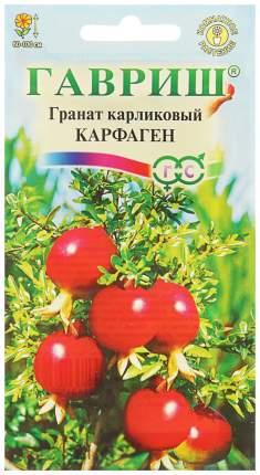 Семена Гранат карликовый Карфаген, 5 шт, Гавриш